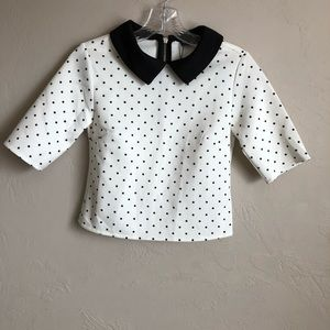 NWT Zara Collection Polka Dot Crop Top